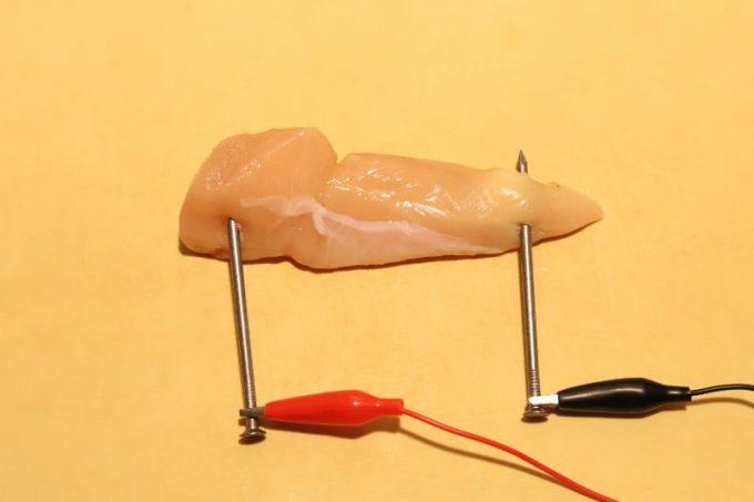 おうちde電気肉